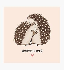 Hedge-hugs Photographic Print