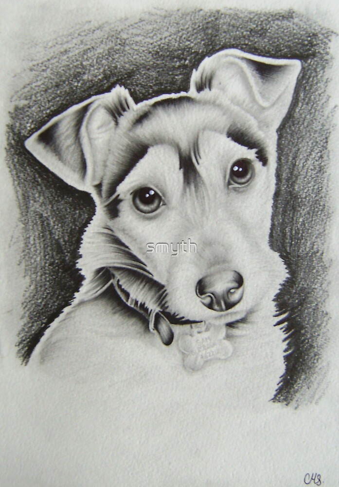 jack russel by craig smith