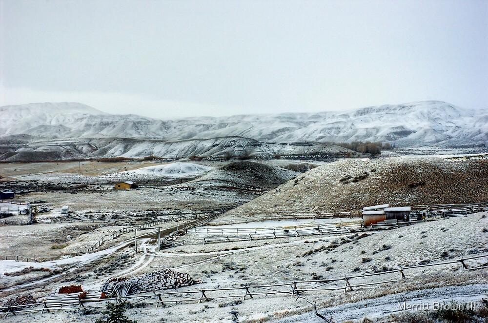 First Snow by Merritt Brown III