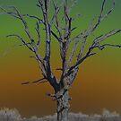 Tree by stephenmakesart