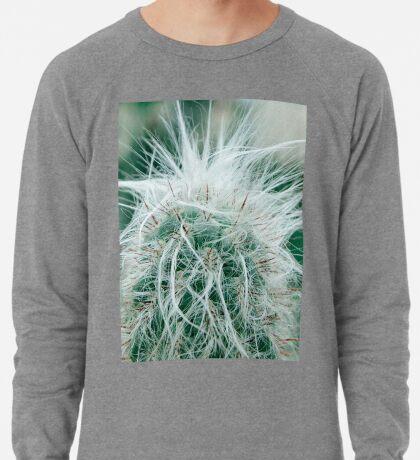 Kaktusfotografie 3 Leichter Pullover