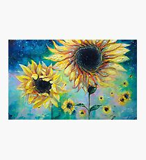 Supermassive Sunflowers Photographic Print