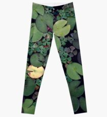 Lily Pads Leggings