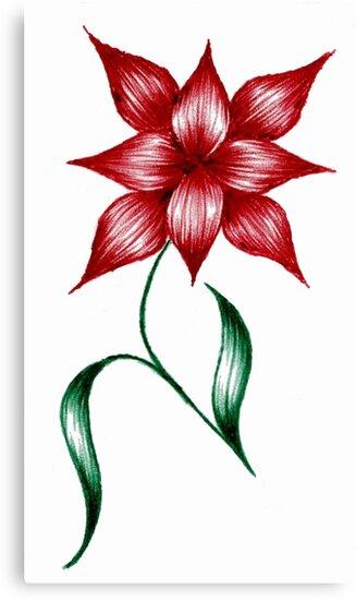 little flower by fitzpatrick
