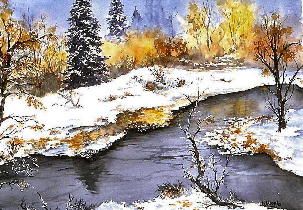 Snowy Pond by Lynne Wright