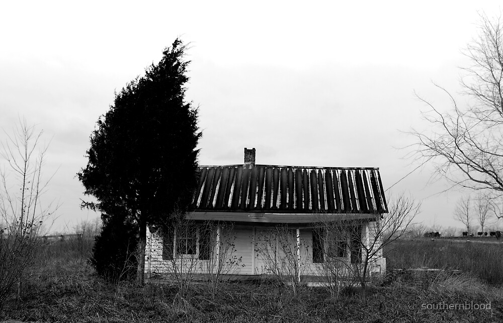 Russell Cave House by southernblood