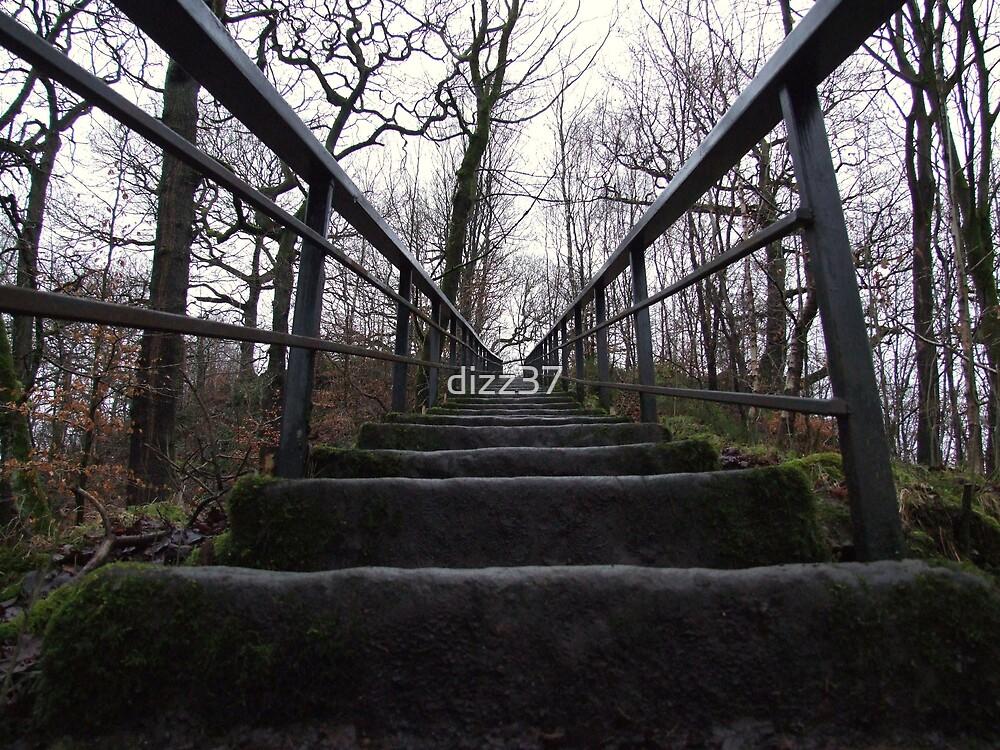 steps to heaven by dizz37