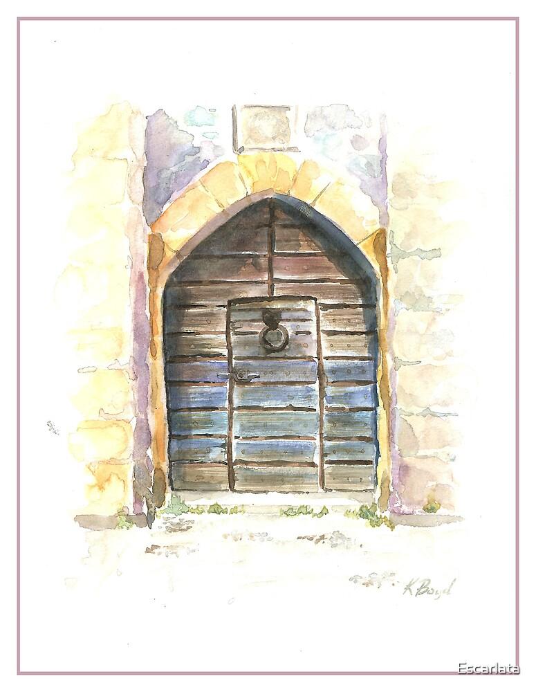 Castle Door by Escarlata