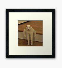 Defenestrating Mushu Framed Print