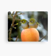 Hun..What Time Is The Parade Supposed To Start? - Silver-Eye - NZ Metal Print
