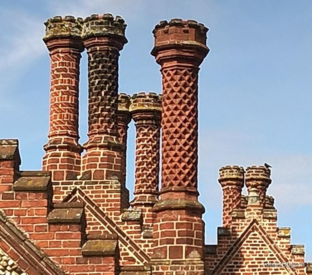 Chimneys Holkham Norfolk by TobiasBugson
