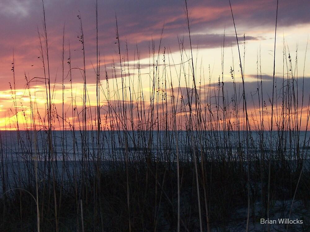 St Pete Beach Sunset by Brian Willocks