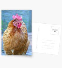 RIP Rosie Girl - NZ Postcards