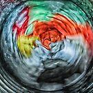 Spin Cycle by John  Kapusta