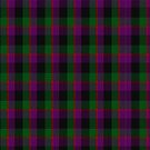 Norwich Collection No. 60 Tartan  by Detnecs2013