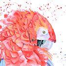 « Loro Rojo » par cindybarillet