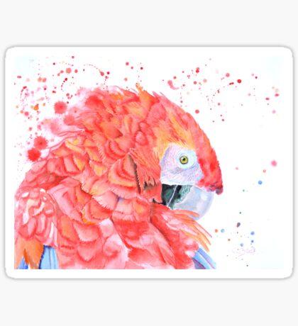 Loro Rojo Sticker