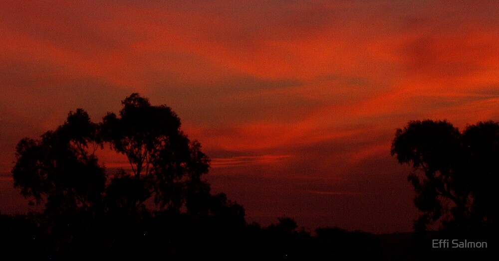 Sunset Wombat Hill Jan 07 by Effi Salmon