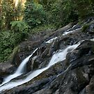 Dinner Falls - Atherton Tablelands by amykphotography