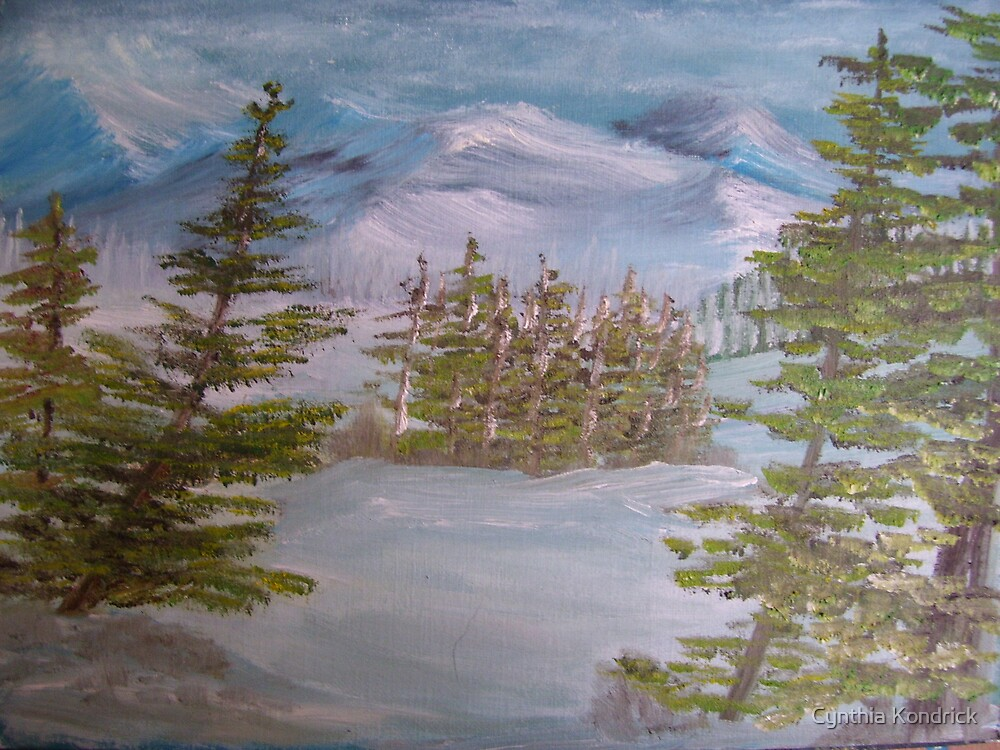 snowy impressions by Cynthia Kondrick