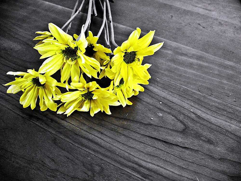 Yellow Flowers on the Table by Tommy Seibold