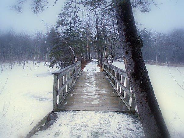 pathway  by Jason LeRue