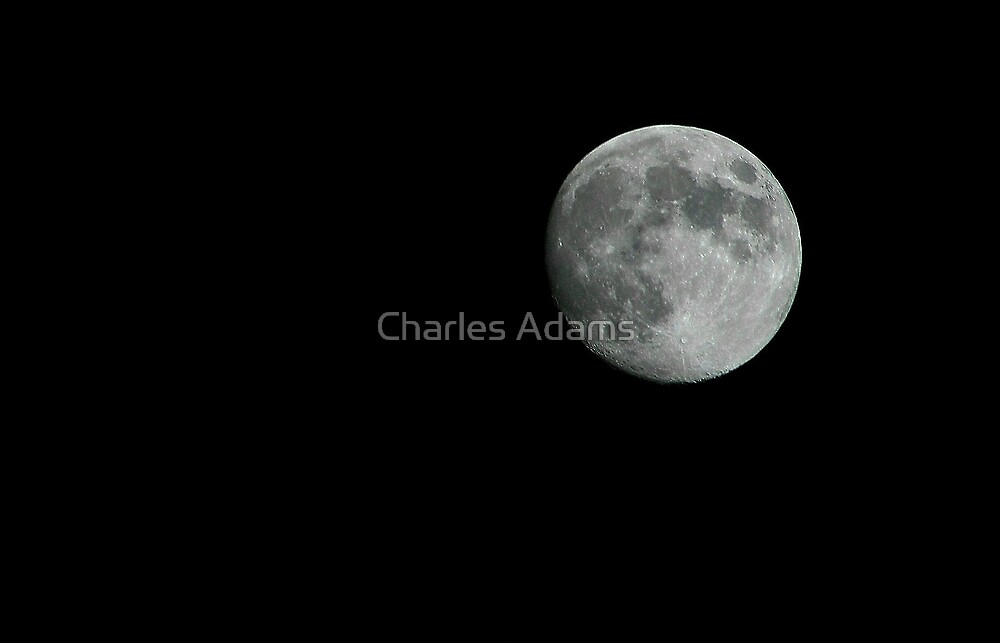 Full Moon by Charles Adams