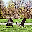 Adirondack Chairs in Spring by Susan Savad