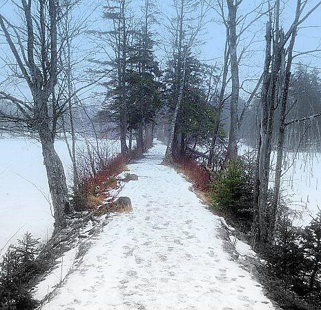 path already taken by Jason LeRue