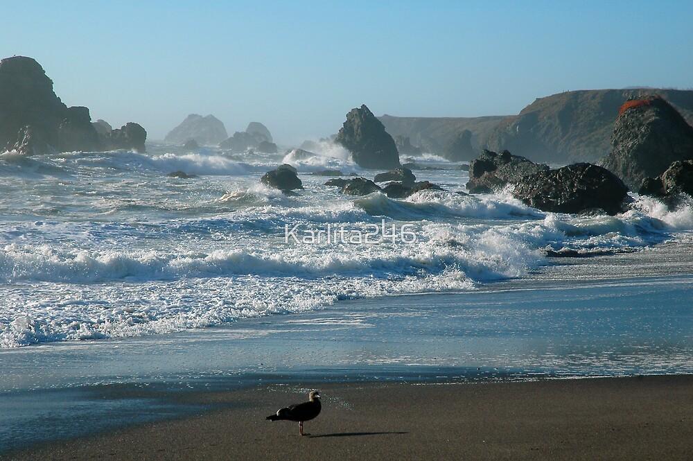 Waves crashing at Goat Rock, Pt. Reyes, CA by Karlita246