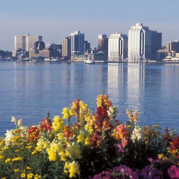 Halifax Nova Scotia by gesau
