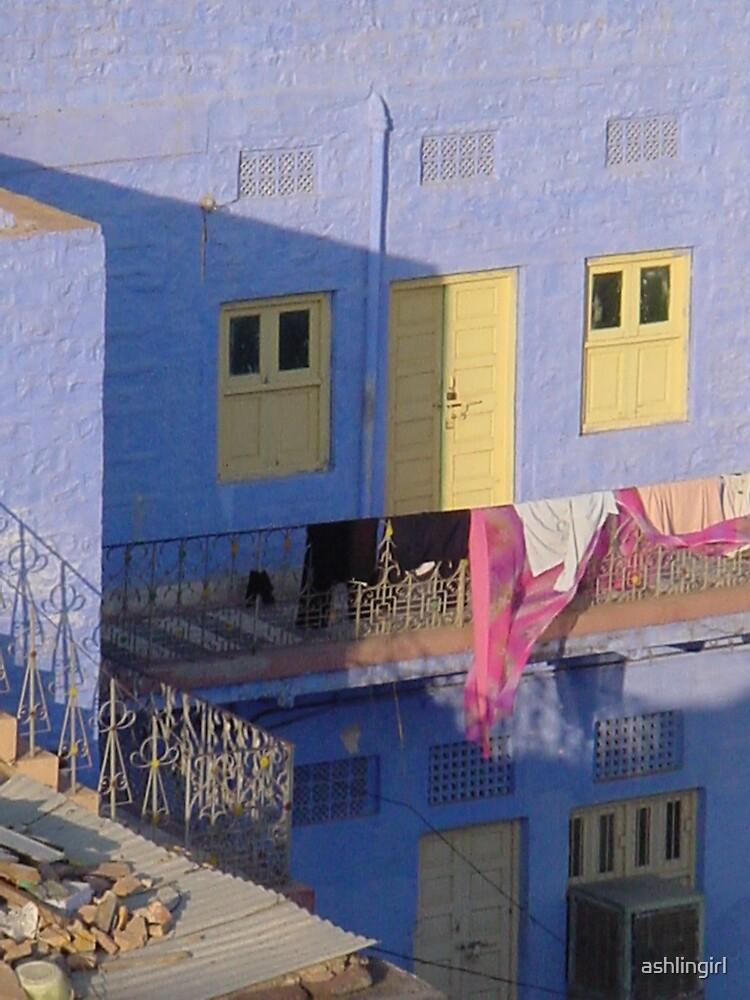 Blue houses, Jodhpur, India by Amanda Hayes