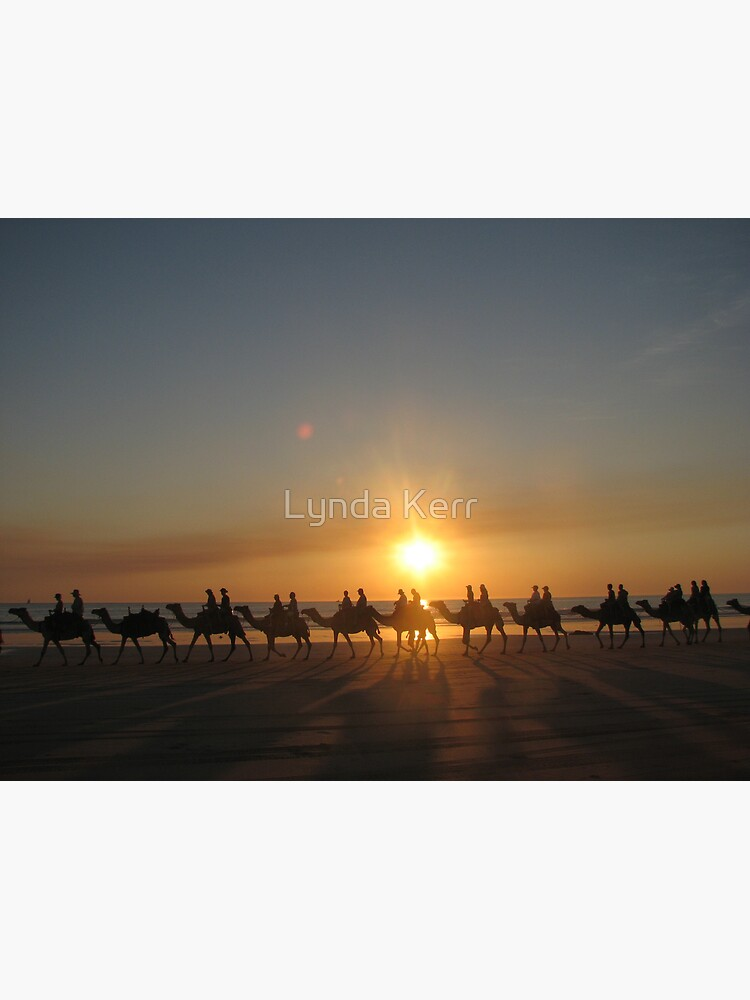 """""""Those Camels"""" Cable Beach,West.Aust by 4sure"""