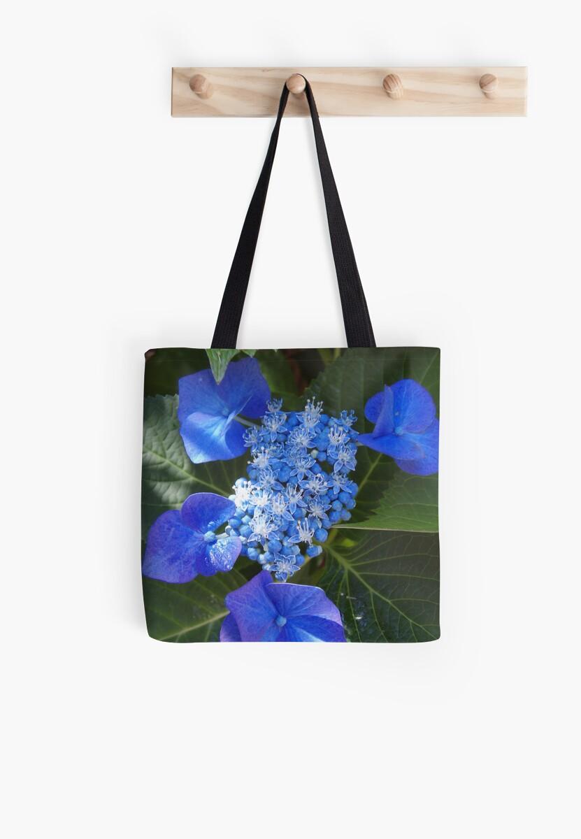 blue hydrangea by gaylene