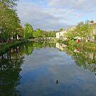 River Avon at Chippenham, Wiltshire, England by trish725