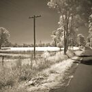Road to... by SpaceCadet34