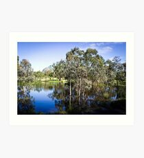 Trees reflected at Dunkeld Community Park, Victoria Art Print