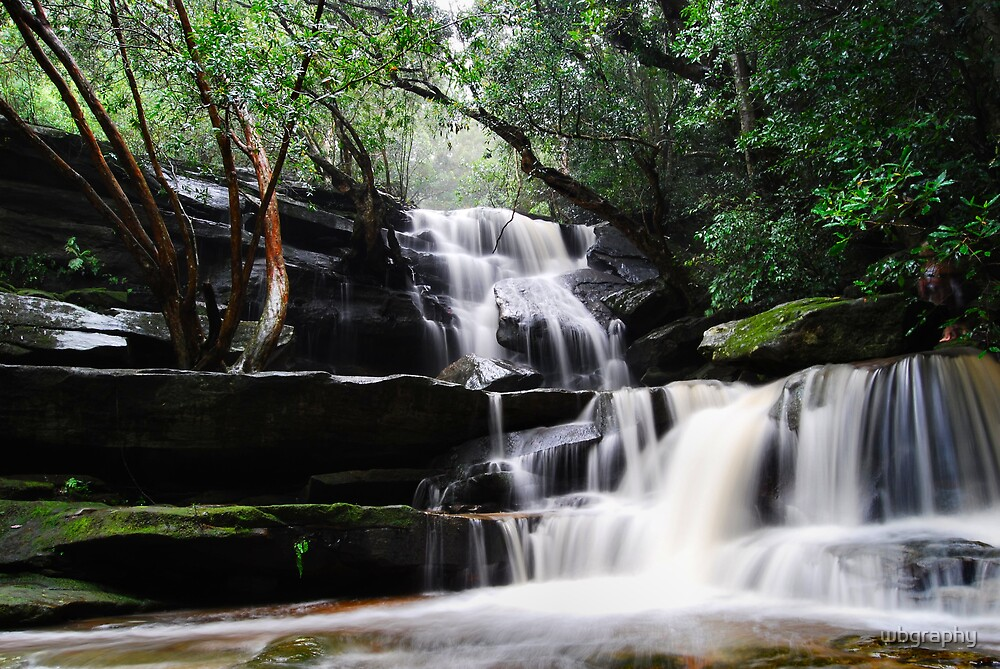 Waterfall from Somersby Falls 9 by wbgraphy