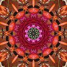 Flower power by Avril Harris