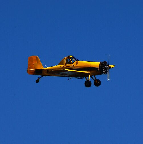 yellowplane by Christian Galbally