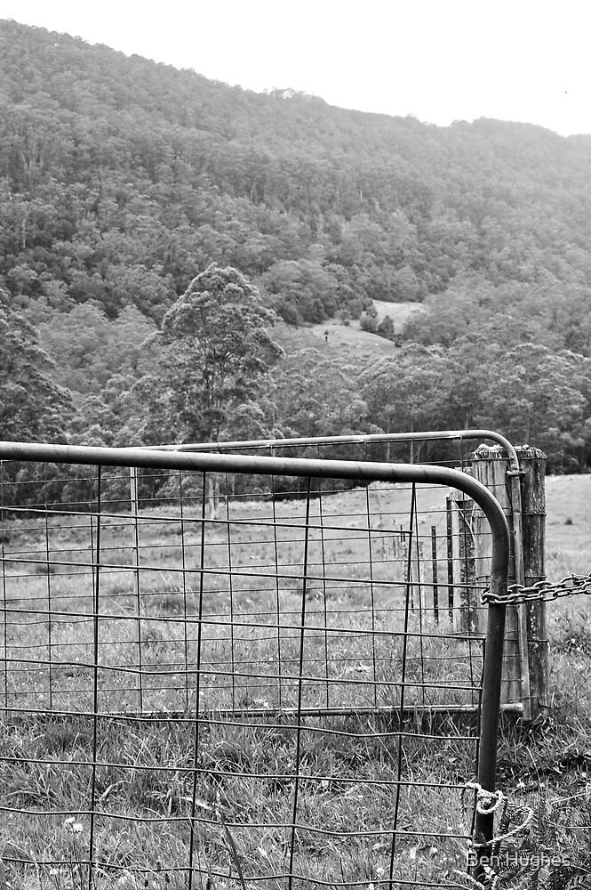 Gate by Ben Hughes