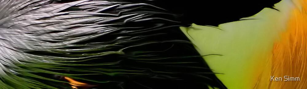Liquid Feathers by Kenart