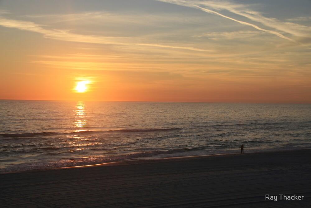 Gulf Coast Sunset by Ray Thacker
