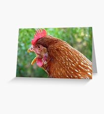 I Laid an EGG! - Red Hen - NZ - Southland Greeting Card