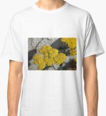 Yellow Yarro Flower  Classic T-Shirt