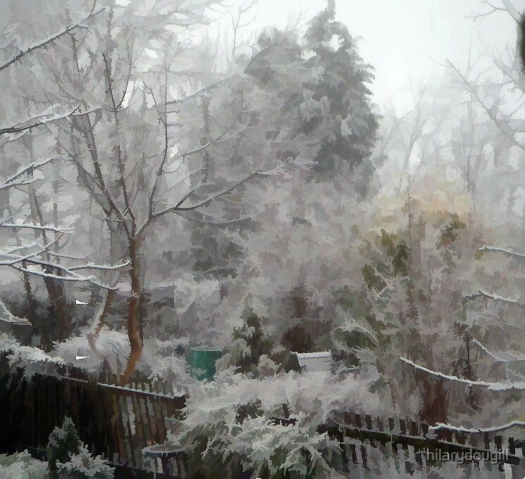 weird snow scene by hilarydougill