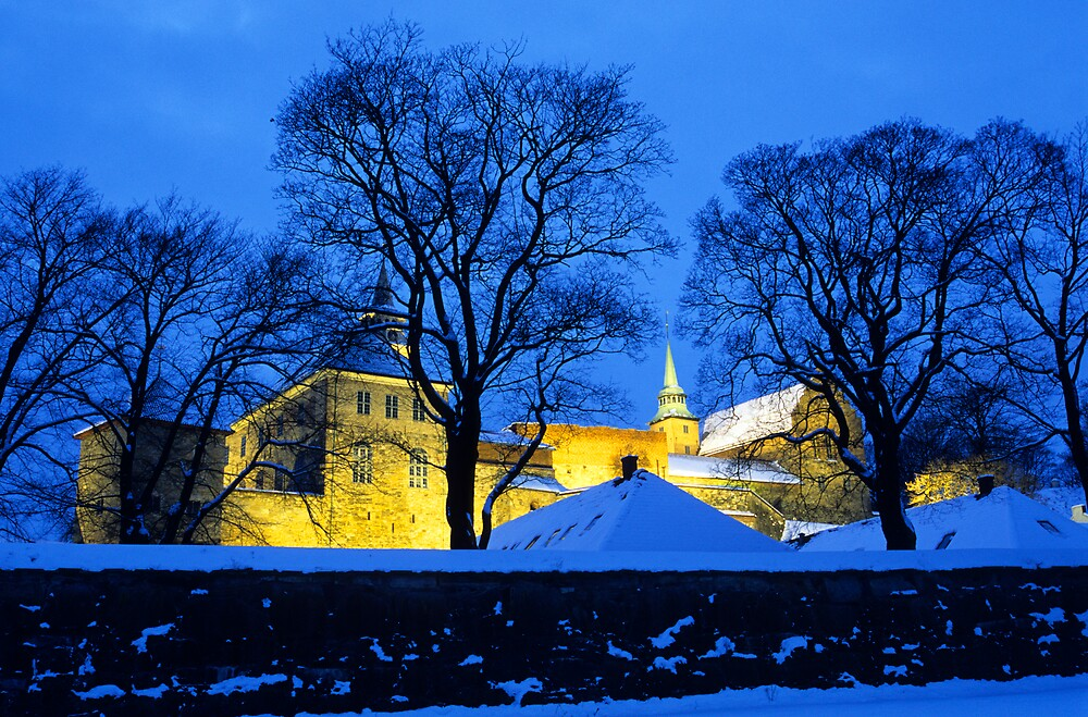 Akershus Castle in Winter, Oslo by Kasia Nowak