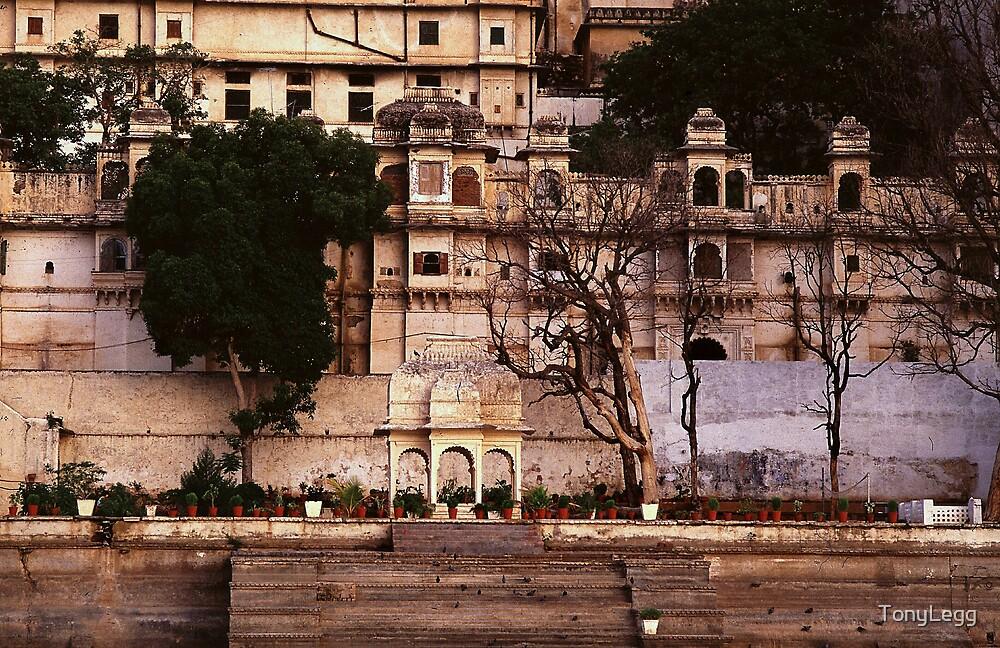 Palace - udaipur by TonyLegg