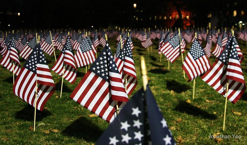 American Flag by Jonathan Yeo