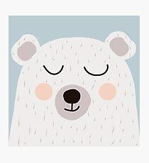 Cute bear Photographic Print